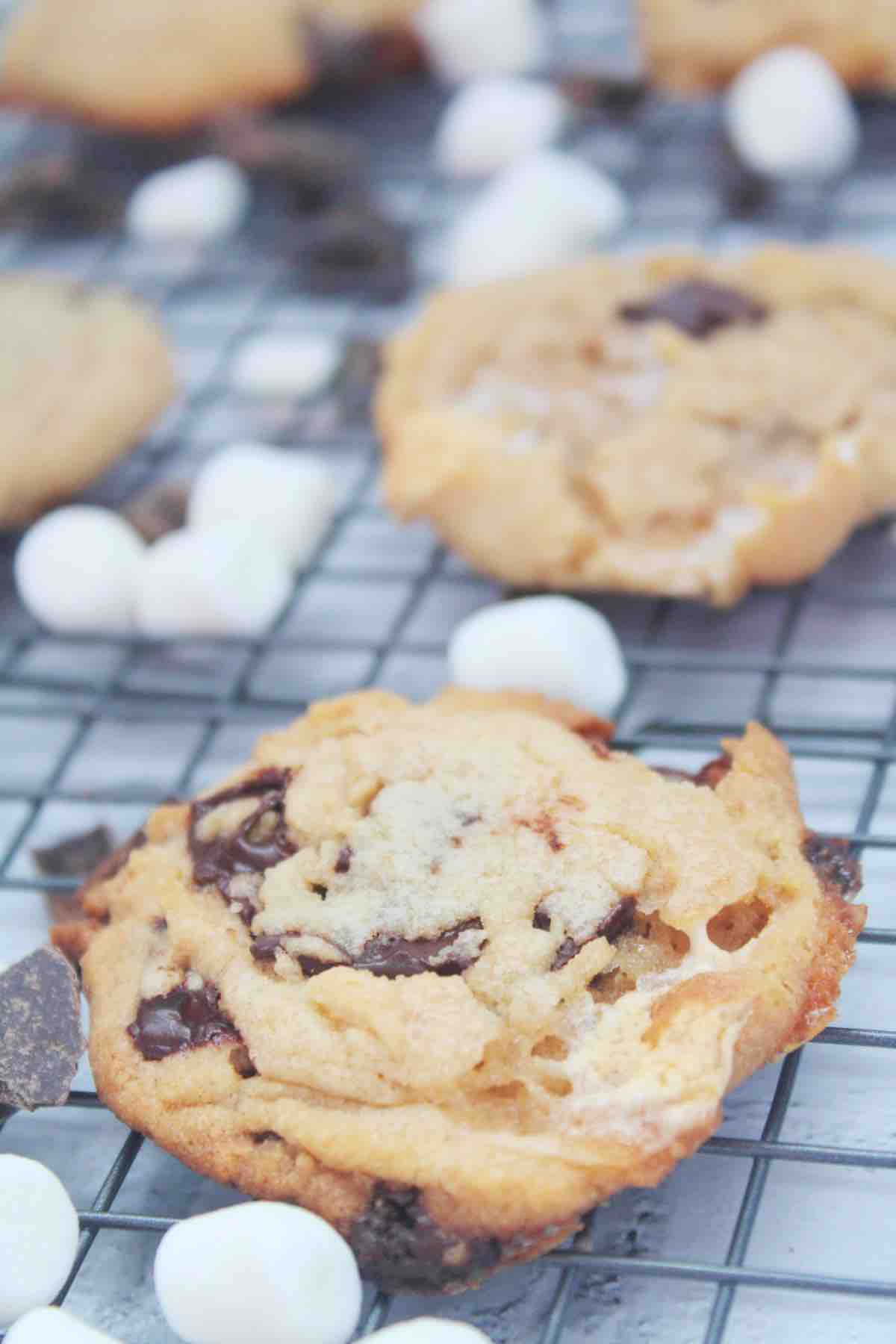 Baked Cookies with Peanut Butter, Marshmallows and Chocolate Chunks
