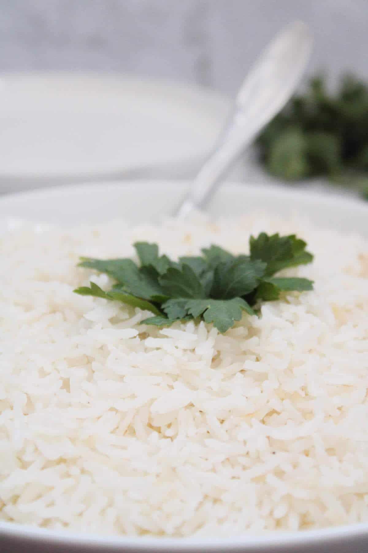 Receita de arroz Brasileiro